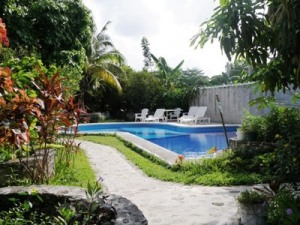 A view of the grounds at Amigos Hostel Cozumel