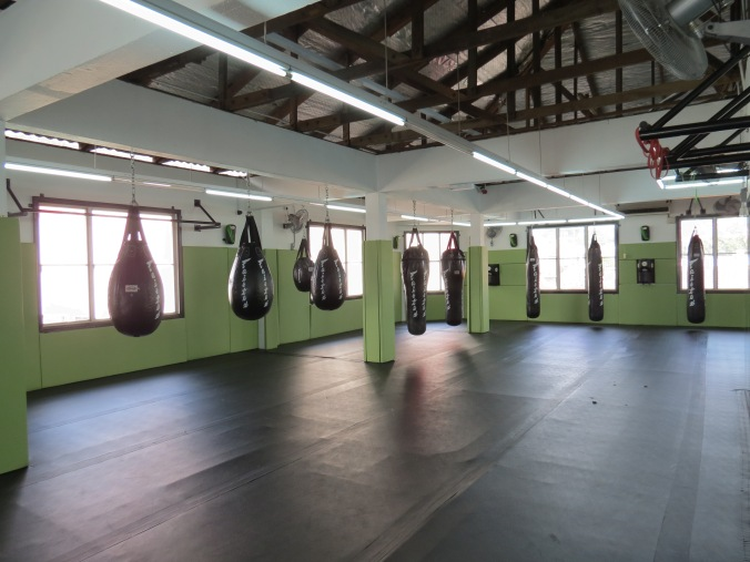 The Matspace at Monarchy MMA's Bangsar location.